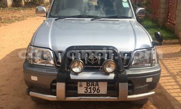 Buy Used Toyota Prado Silver Car in Chipata in Zambia