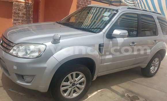 Buy Used Ford Escape Silver Car in Chipata in Zambia