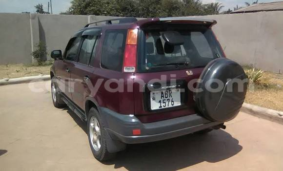 Buy Used Honda CR–V Red Car in Chipata in Zambia