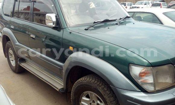 Buy Used Toyota Prado Car in Chipata in Zambia