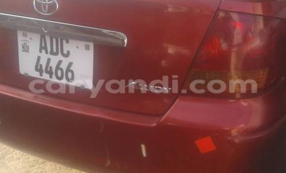 Buy Used Toyota Allion Red Car in Chipata in Zambia