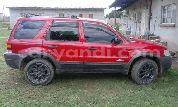 Buy Used Ford Escape Red Car in Chipata in Zambia