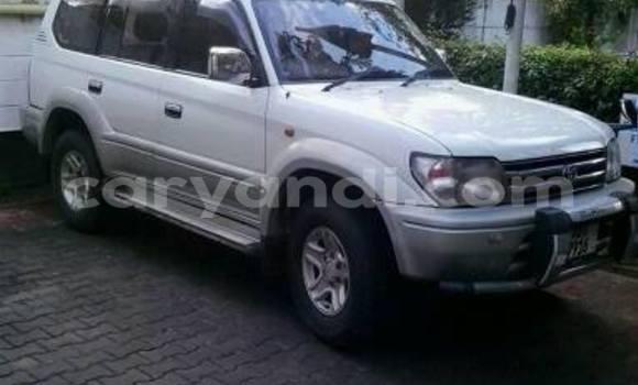 Buy Used Toyota Prado White Car in Chipata in Zambia