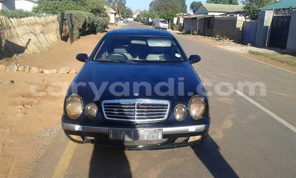 Buy Used Mercedes–Benz CLK–Class Black Car in Chipata in Zambia
