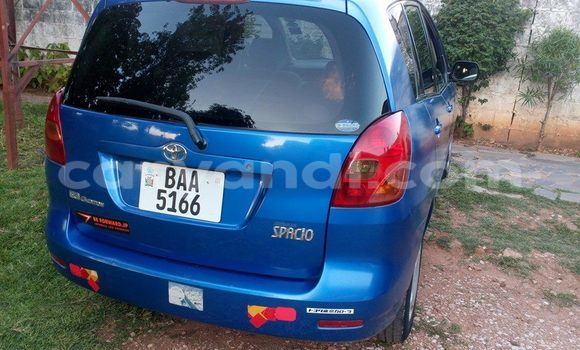Buy Used Toyota Spacio Blue Car in Chipata in Zambia