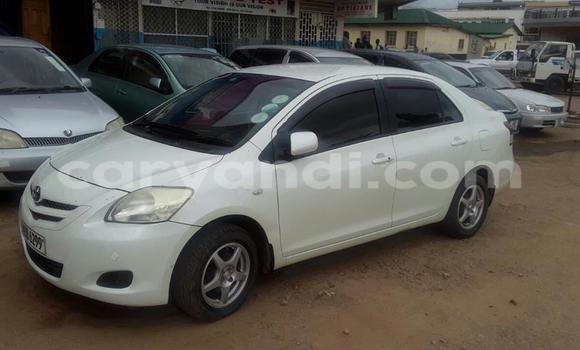 Buy New Toyota bB White Car in Chipata in Zambia