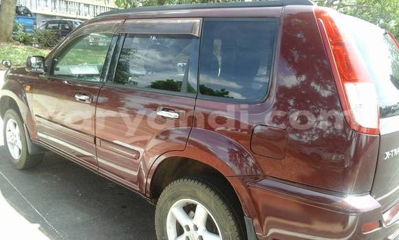 Buy Used Nissan X–Trail Red Car in Chipata in Zambia
