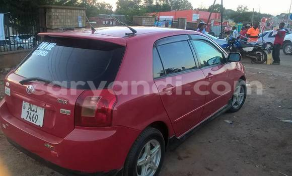 Buy Used Toyota Runx Red Car in Chipata in Zambia