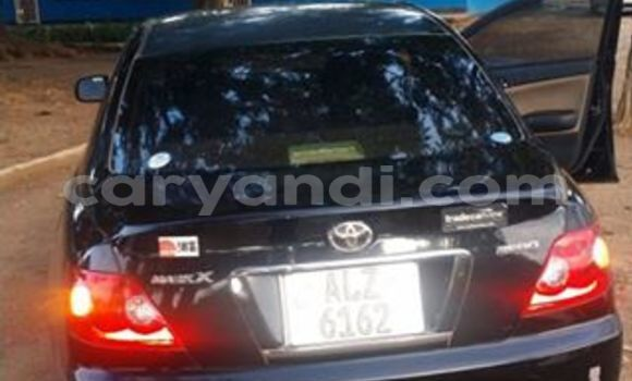 Buy Used Toyota Mark X Black Car in Chipata in Zambia