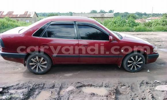 Buy Used Toyota Corolla Red Car in Chipata in Zambia
