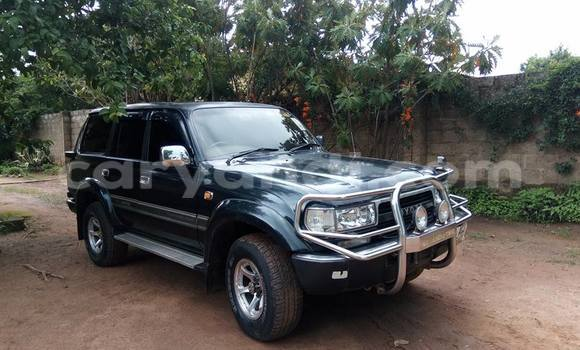 Buy Used Toyota Land Cruiser Car in Chipata in Zambia