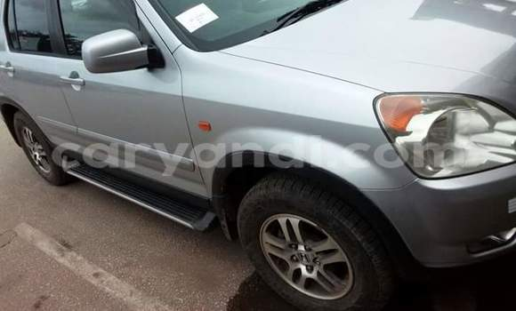 Buy Used Honda CR-V Silver Car in Chipata in Zambia