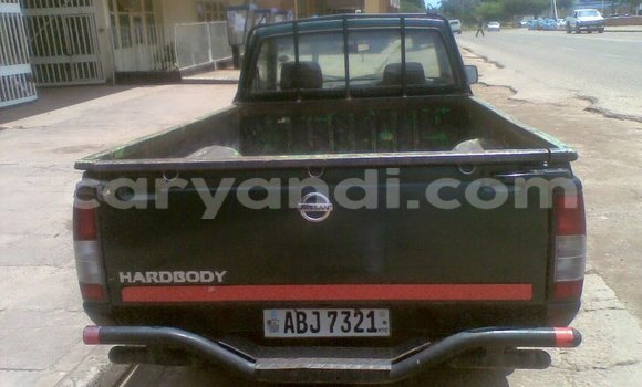 Buy Used Nissan Hardbody Car in Chipata in Zambia