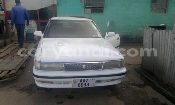 Buy Used Toyota Corolla White Car in Chipata in Zambia