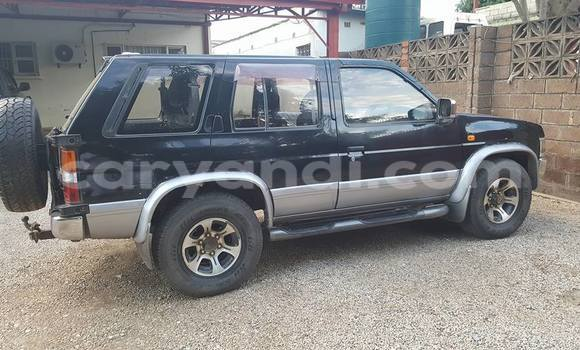 Buy Used Nissan Terrano Black Car in Chipata in Zambia