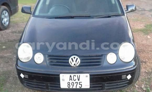 Buy Used Volkswagen Polo Black Car in Chipata in Zambia