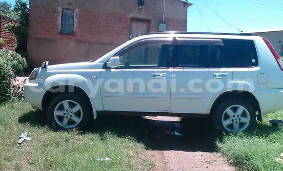 Buy Used Nissan X–Trail White Car in Chipata in Zambia