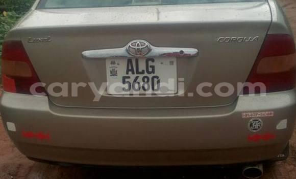 Buy Used Toyota Corolla Silver Car in Chipata in Zambia