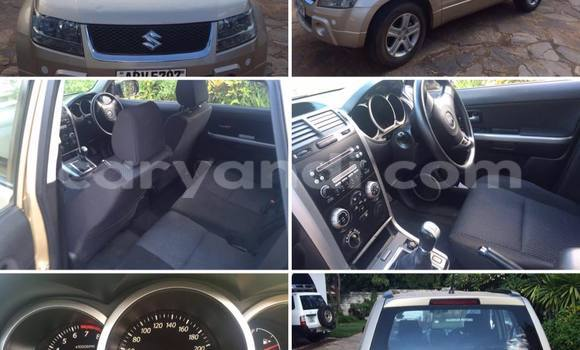 Buy Used Suzuki Grand Vitara Other Car in Chipata in Zambia