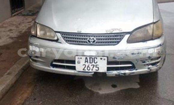 Buy Used Toyota Spacio Silver Car in Chipata in Zambia