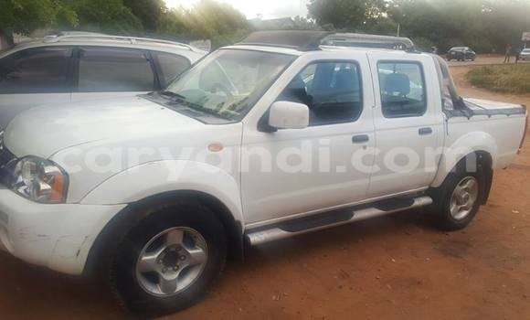 Buy Used Nissan Hardbody White Car in Chipata in Zambia