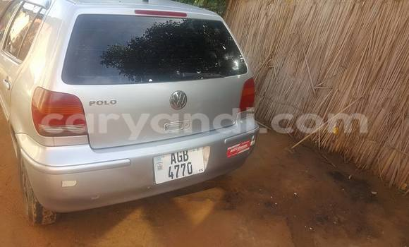 Buy Used Volkswagen Polo Silver Car in Chipata in Zambia