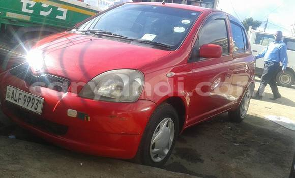 Buy Used Toyota Vitz Red Car in Chipata in Zambia