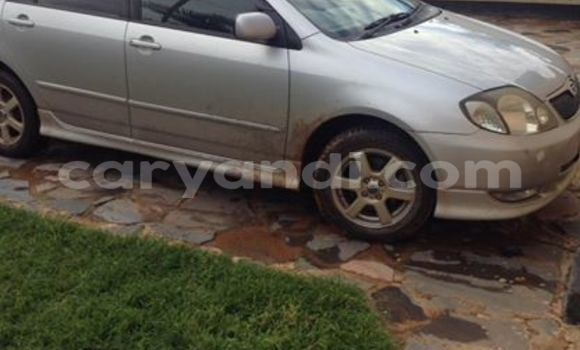 Buy Used Toyota Runx Silver Car in Chipata in Zambia