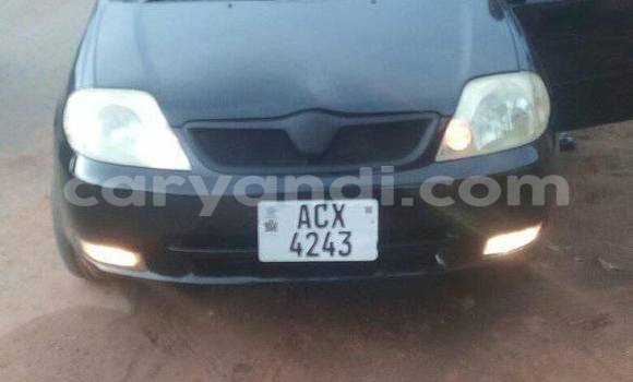 Buy Used Toyota Runx Black Car in Chipata in Zambia