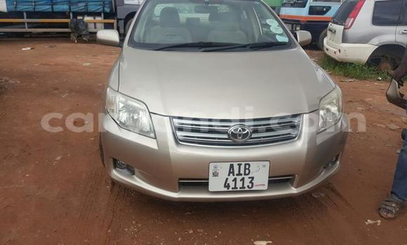 Buy Used Toyota Axio Other Car in Chipata in Zambia