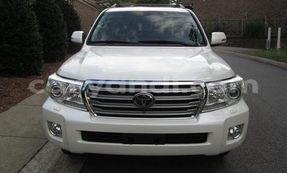 Buy New Toyota Land Cruiser White Car in Chipata in Zambia