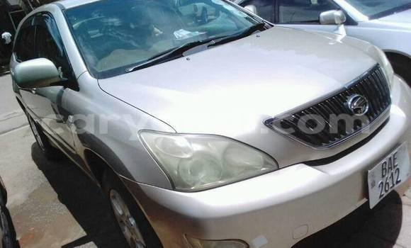 Buy Used Toyota Harrier Other Car in Chipata in Zambia
