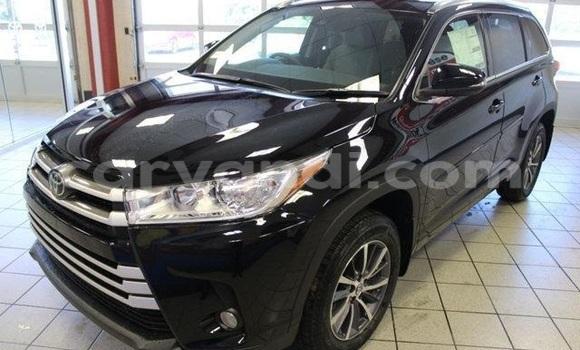 Buy New Toyota Highlander Black Car in Chingola in Zambia
