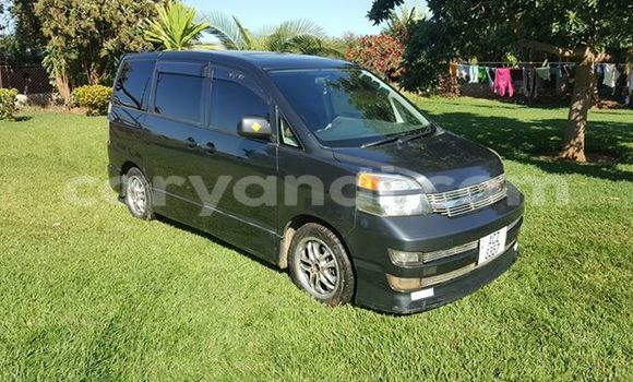 Buy Used Toyota Noah Black Car in Chipata in Zambia