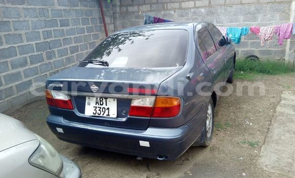 Buy Used Nissan Primera Blue Car in Chipata in Zambia