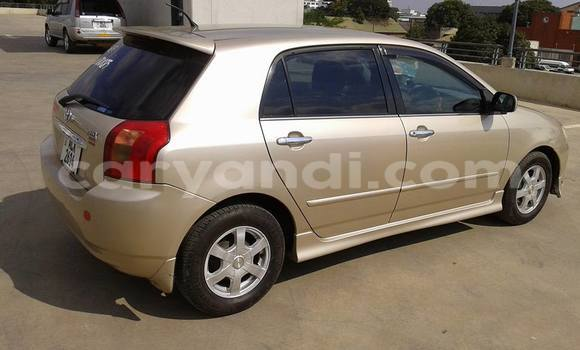 Buy Used Toyota Allex Other Car in Lusaka in Zambia