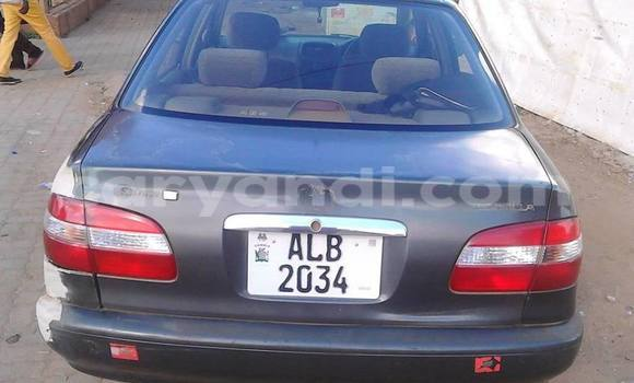 Buy Used Toyota Corolla Other Car in Lusaka in Zambia