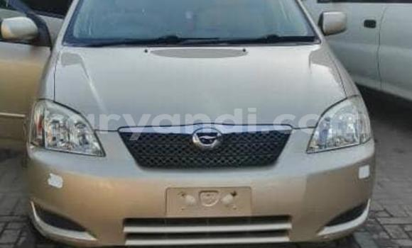 Medium with watermark toyota runx zambia lusaka 11483