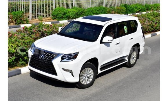 Medium with watermark lexus gx zambia import dubai 11531