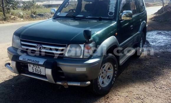 Buy Used Toyota Prado Green Car in Lusaka in Zambia