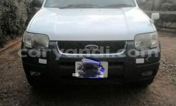 Buy Used Ford Escape White Car in Lusaka in Zambia