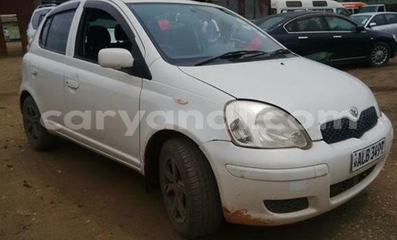 Buy Used Toyota Vitz White Car in Chingola in Zambia