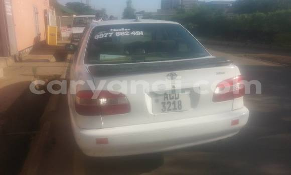 Buy Used Toyota Corolla White Car in Lusaka in Zambia