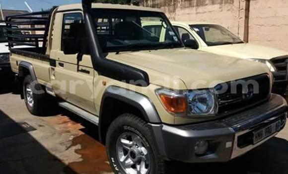 Buy Used Toyota Pickup Beige Car in Lusaka in Zambia