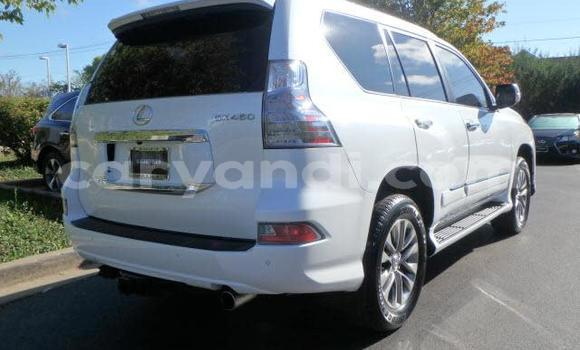 Buy New Toyota 4Runner White Car in Lusaka in Zambia