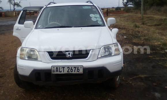 Buy Used Honda CR–V White Car in Lusaka in Zambia