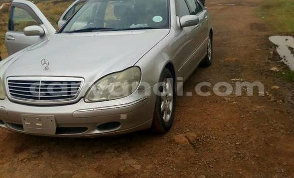 Buy Used Mercedes–Benz S–Class Silver Car in Chipata in Zambia