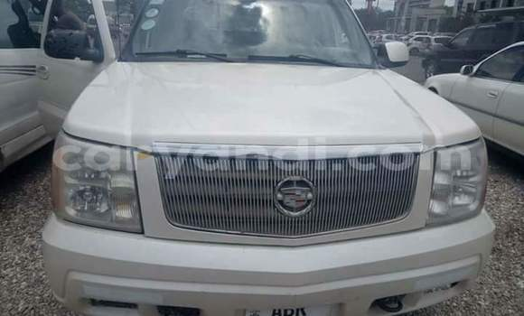 Buy Used Cadillac Escalade White Car in Lusaka in Zambia