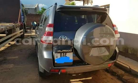Buy New Toyota Land Cruiser Black Car in Lusaka in Zambia