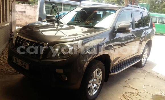 Buy New Toyota Land Cruiser Prado Black Car in Lusaka in Zambia